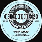 "Skyzoo & 9th Wonder - Way to Go 12"" Single"