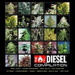 Various Artists - Diesel Compilation CD