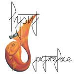 Input - Pictureface CD