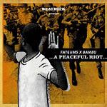 Fatgums X Bambu - A Peaceful Riot... LP