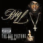 Big L - The Big Picture 1974-1999 CD