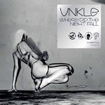 Unkle - Where Did The Night Fall CD