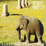 Infinity Gauntlet - Elephant Graveyard CDR