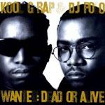 Kool G Rap & DJ Polo - Wanted: Dead or Alive 4xLP