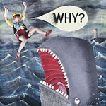 Why? - Mumps, etc. CD