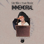 Cole Nibbe & Howie Wonder - Immemorial Cassette