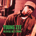 Young Zee - Musical Meltdown Cassette