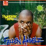 Sunspot Jonz - Fallen Angelz CD