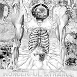Dialectx Crew - Wonderful Strange CD