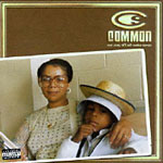 Common - One Day It'll All Make... 2xLP