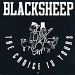 "Black Sheep - Choice is Yours 12"" Single"
